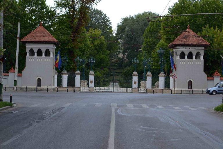 VIDEO – Defrisari ILEGALE in centrul Bucurestiului, langa Palatul Cotroceni!
