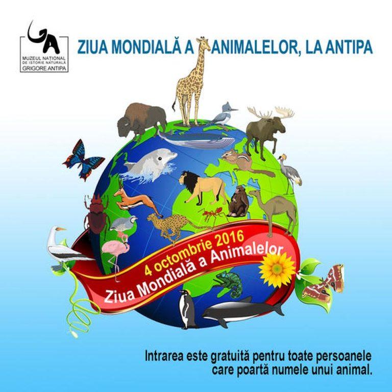 Intrare libera astazi la Muzeul Antipa, cu ocazia Zilei Mondiale a Animalelor!