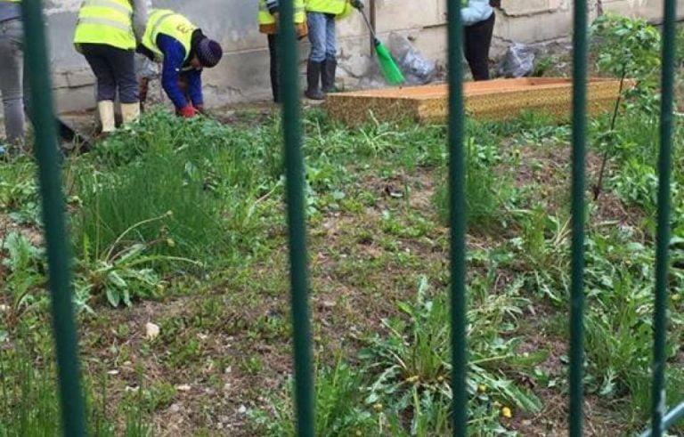 In Sectorul 3 ca-n favele… Au aruncat patul pe geam si era sa cada pe oamenii care curatau gradina din fata blocului!