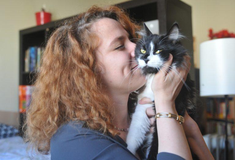 Primaria Capitalei anunta ca incepe recensamantul animalelor de companie. Cum se va desfasura