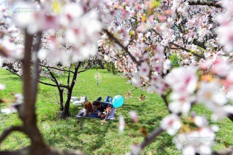 Toate parcurile Bucurestiului inchise incepand de astazi
