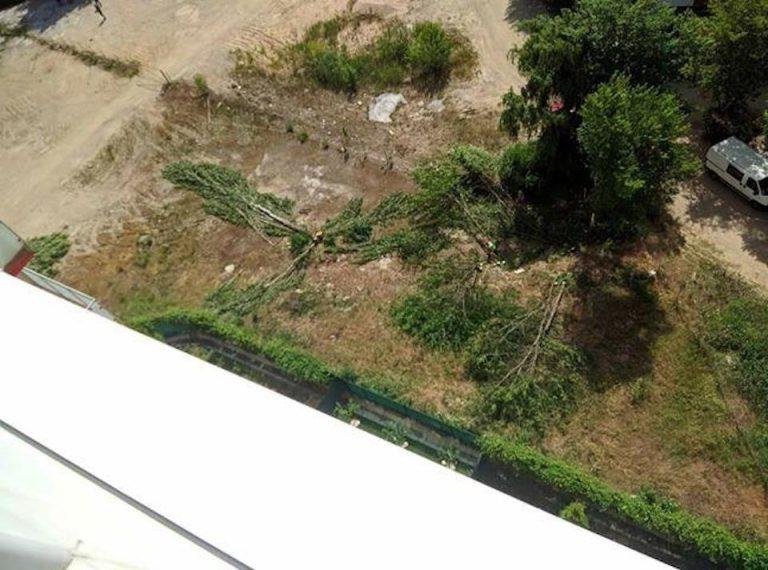 Defrisari in Parcul Tineretului: Incepe constructia unui ansamblu de blocuri pana la 14 etaje!
